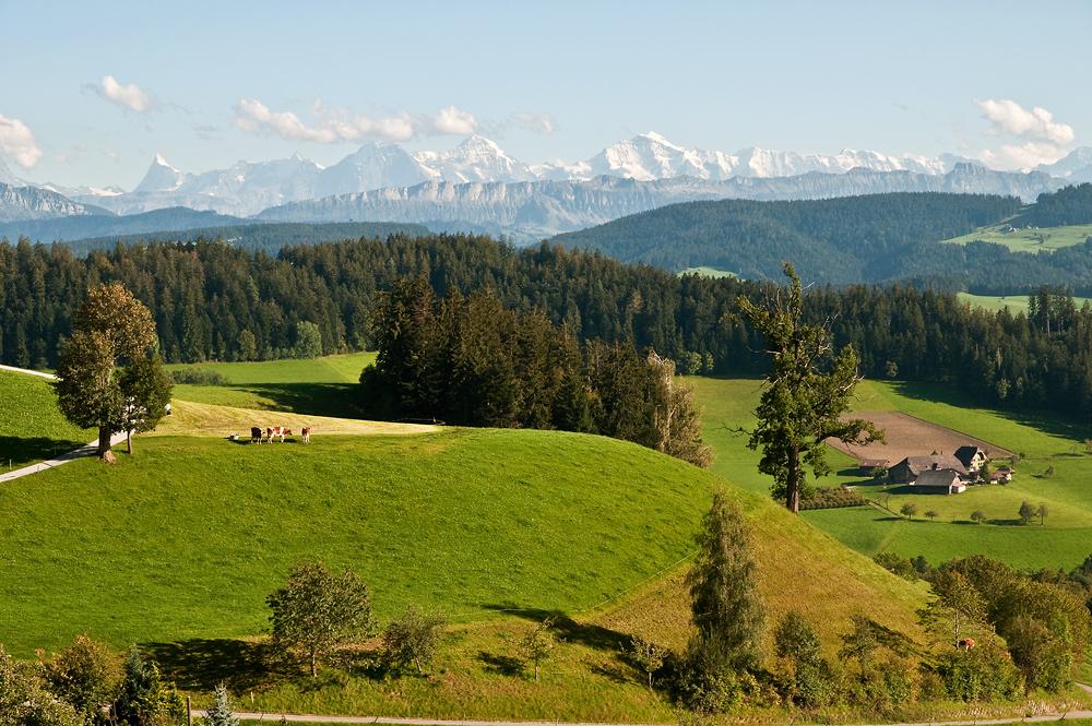 Emmental mit Blick auf die Berner Viertausender