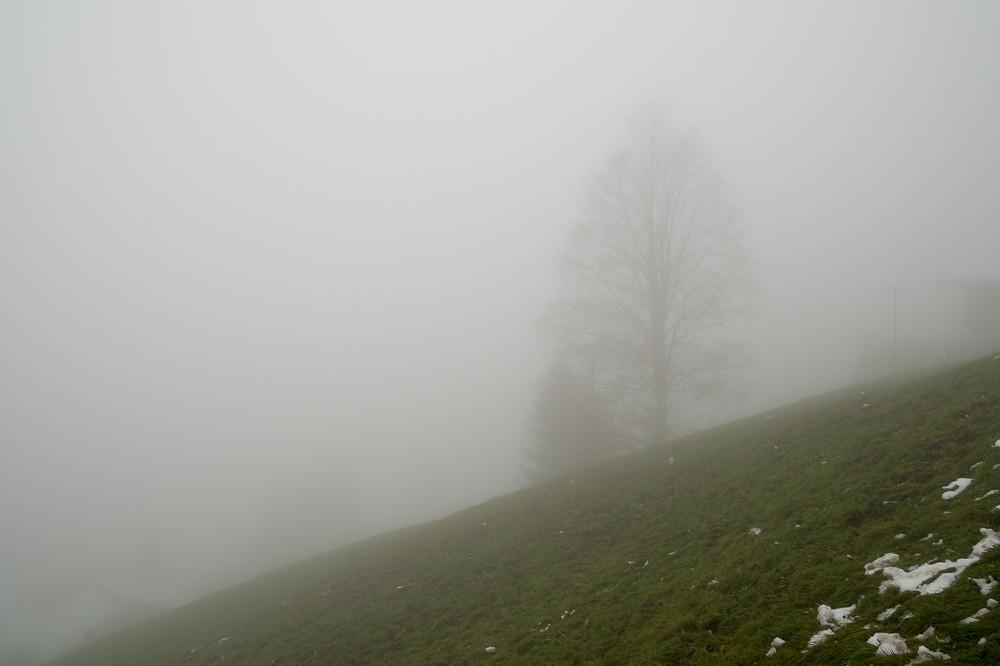 Vom Dorf Habkern ist um die Mittagszeit nicht viel zu sehen, denn es befindet sich erwartungsgemäss inmitten des dichtesten Nebels.