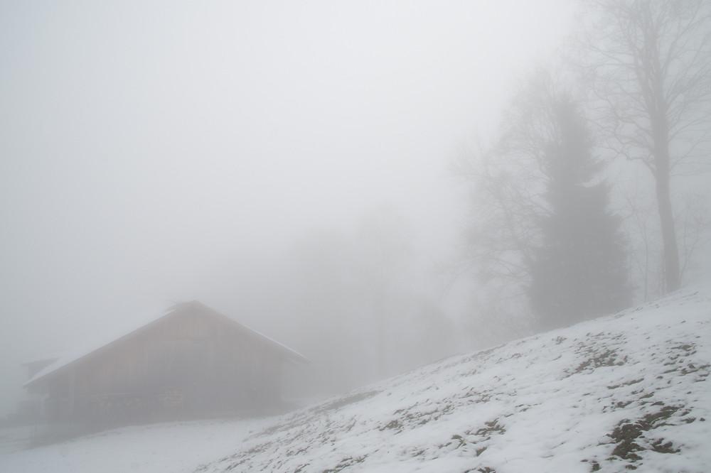 Auf 1200 m wird es immerhin schon etwas heller, was aber teilweise auch auf den reflektierenden Schnee zurückzuführen ist.