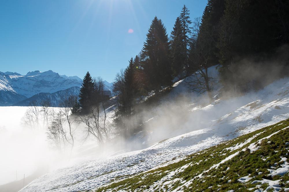 1310 m, am sonnigen Hang ist die Thermik zwar weitaus schwächer als in den Sommermonaten, aber sie ist durchaus vorhanden. Durch die aufsteigende Luft werden immer wieder Nebelfetzen aus der Decke hochgesogen, die aber in der Sonne rasch verdunsten.