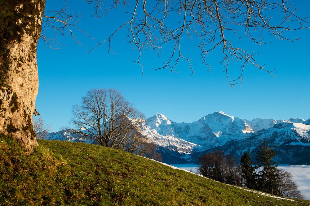 Der im Alpenraum vielerorts sonnigste Dezember seit Messbeginn liess den im Herbst gefallenen Schnee wie hier im Berner Oberland wieder schmelzen