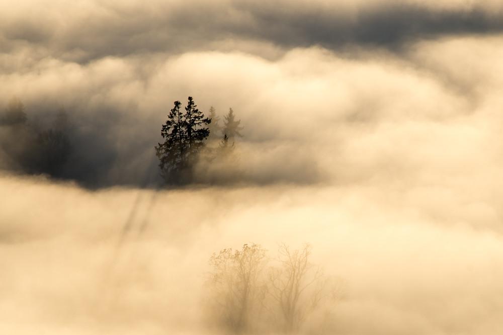 Erst der November brachte ruhiges Hochdruckwetter und die damit verbundenen Nebellagen