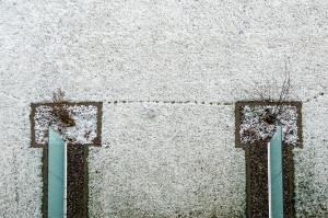 Wie hier bei Bern liegt am Morgen des 02.02.2014 vielerorts ein Schäumchen Neuschnee