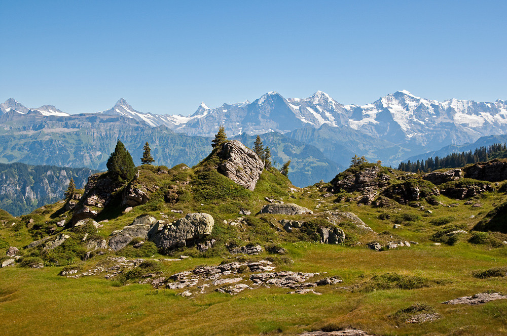 Wiederholt sorgten Hochdruckgebiete für wolkenloses Wetter und beste Fernsicht wie hier im Berner Oberland