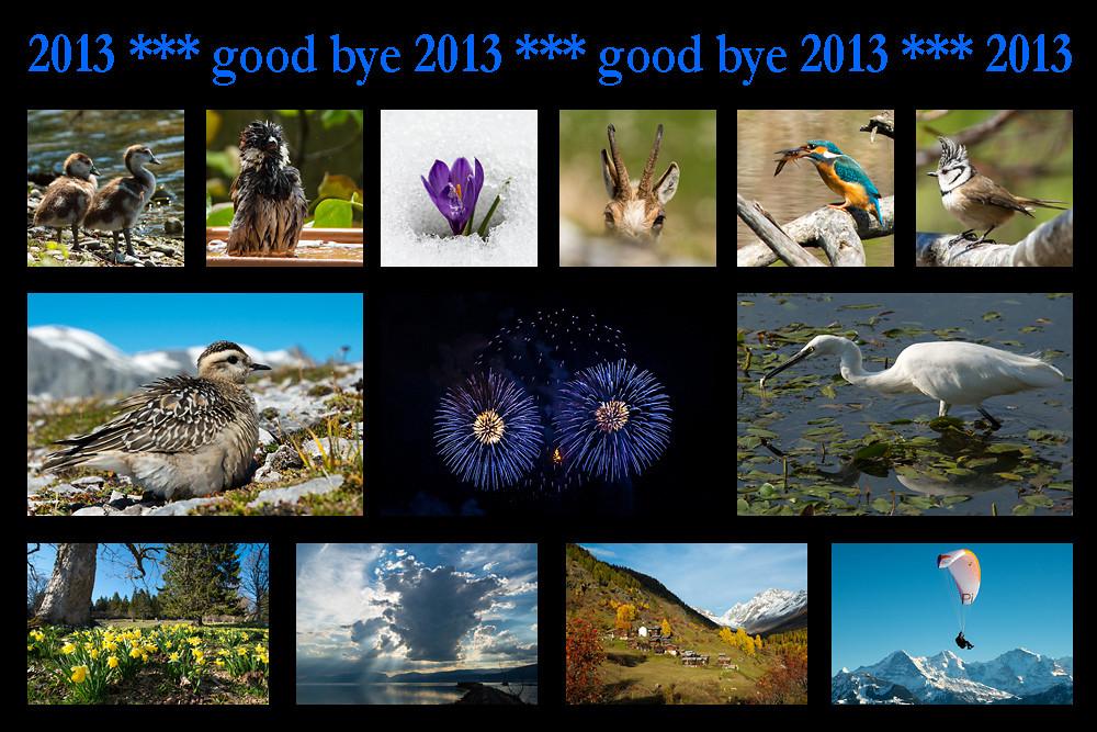 good-bye-2013