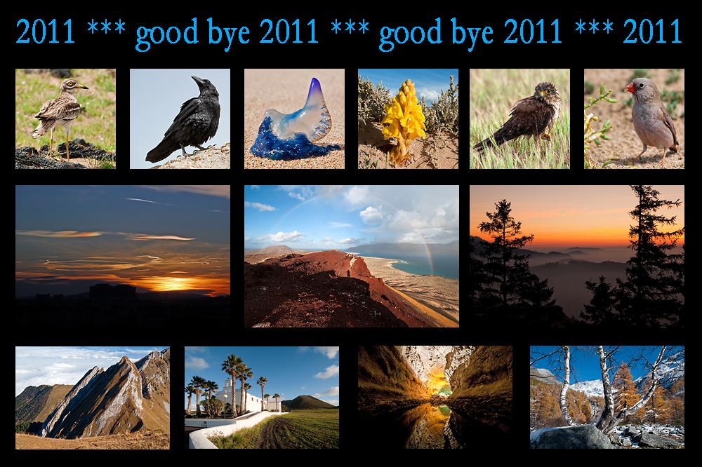 goodbye-2011