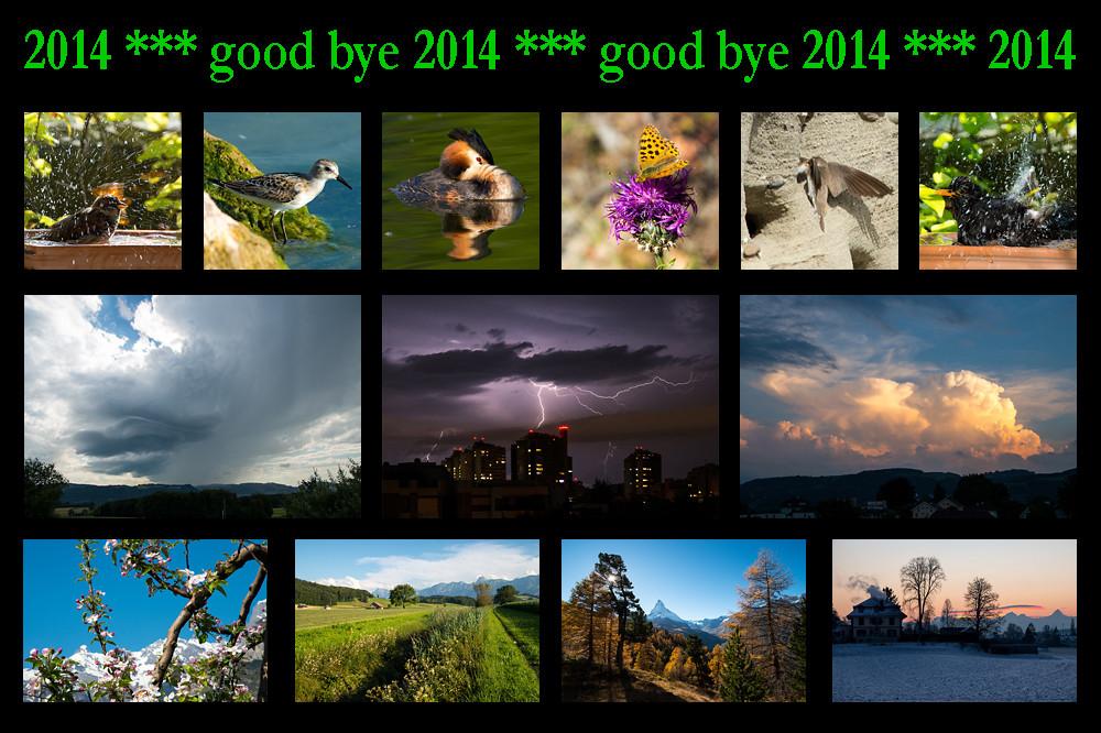 good-bye-2014
