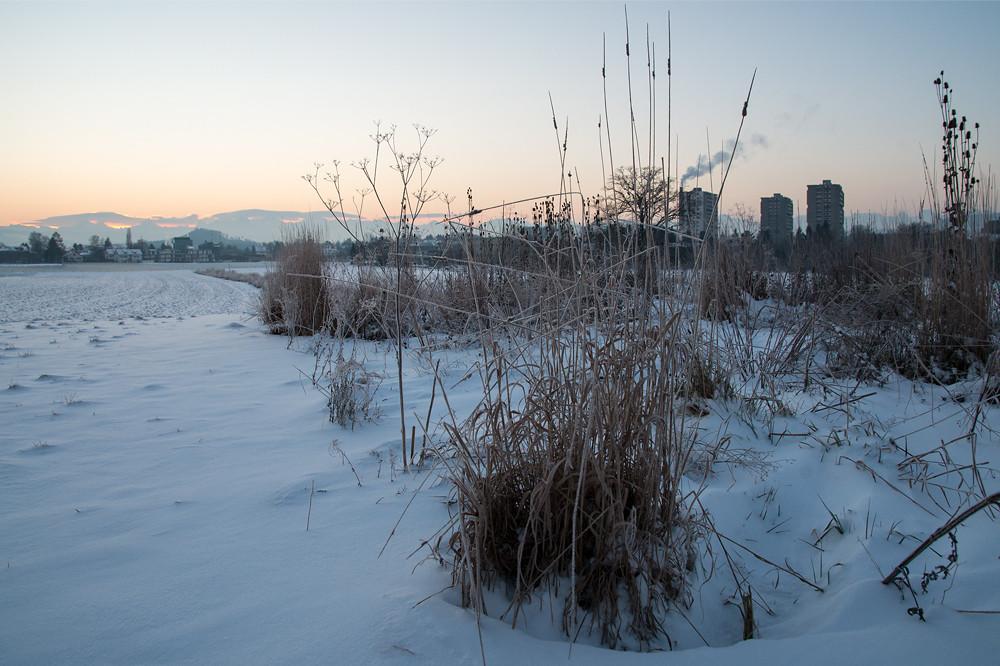 Er kam dann doch noch, der Winter: kältester Mogen des Jahres 2014 am 29. Dezember, hier -13 Grad am Stadtrand von Bern