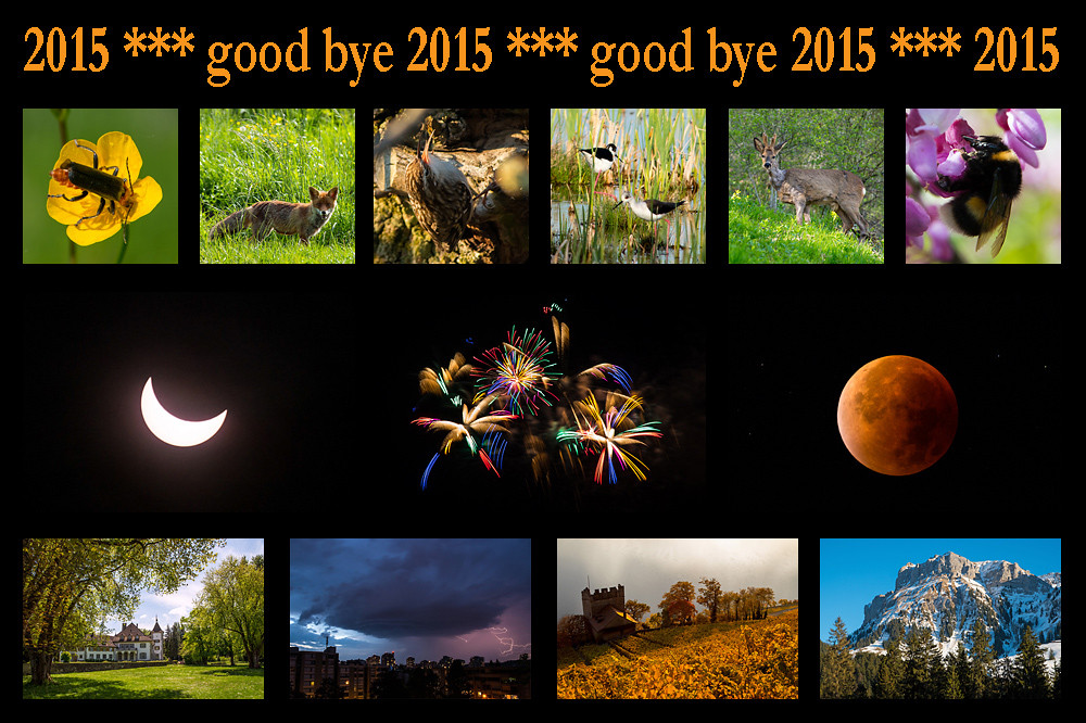 good-bye-2015