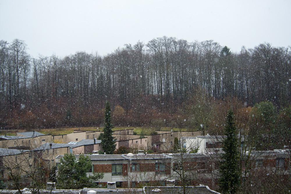 So präsentierte sich der Februar 2016 über weite Strecken: Trüb, nass-kalt, aber keineswegs tiefwinterlich (Muri bei Bern, 25.02.2016)