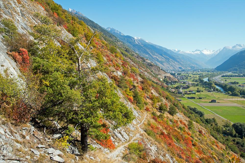 Wem die einzelnen goldenen Oktobertage im Flachland nicht genug waren, musste in die inneren Alpentäler ausweichen (Leuk, Wallis, 12.10.2016)
