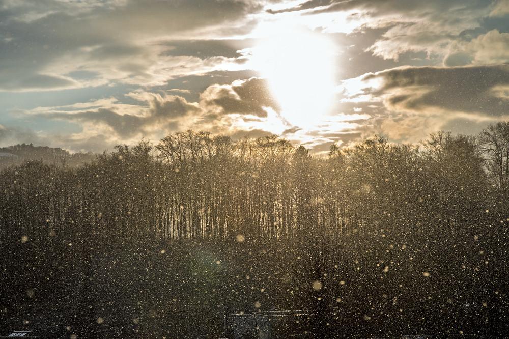 Eine Binsenwahrheit sagt: Bringt der Winter nichts zustande, dann holt es der März nach.