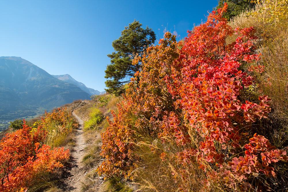 Meteorologische Ereignislosigkeit auch im Oktober. Immerhin sorgt die Natur wie hier im Zentralwallis für die notwendigen Farbtupfer.